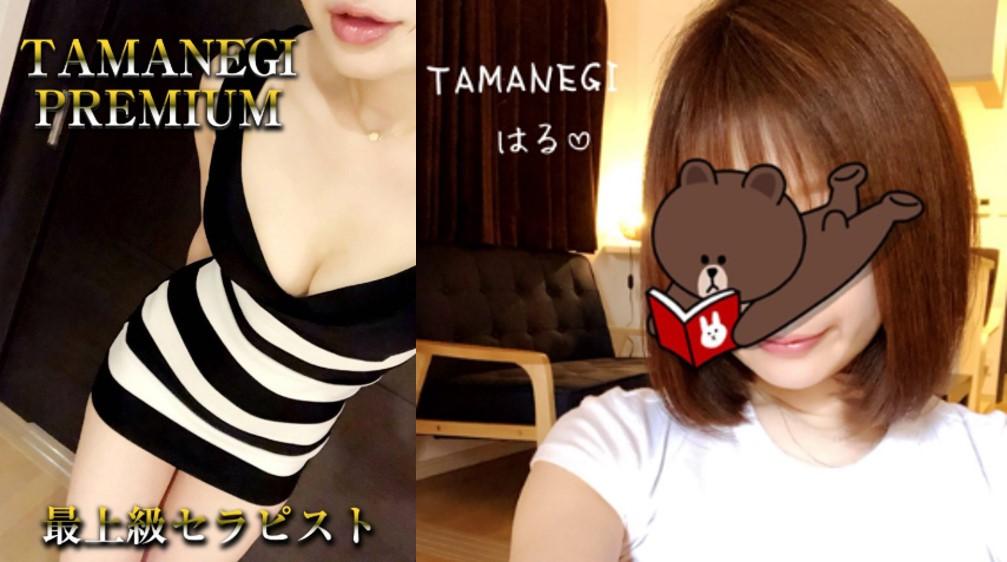 大阪のメンズエステ店TAMANEGI(タマネギ)のセラピストはるさんの写真