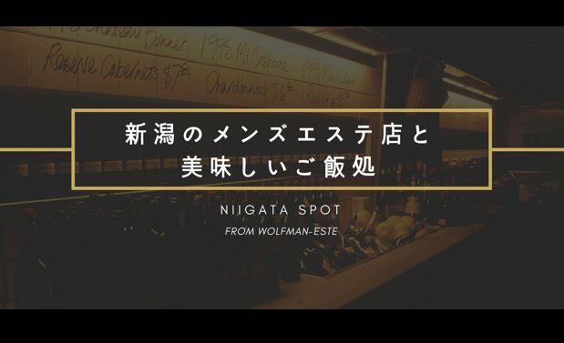 新潟のオススメスポットまとめ記事